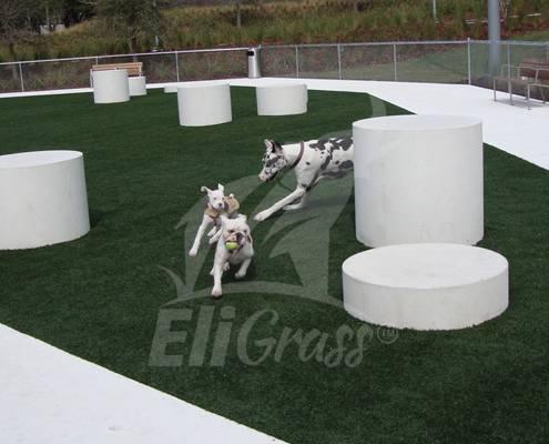 EliGrass Pet Solutions 02