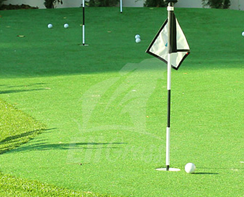 EliGrass Sports Golf 01