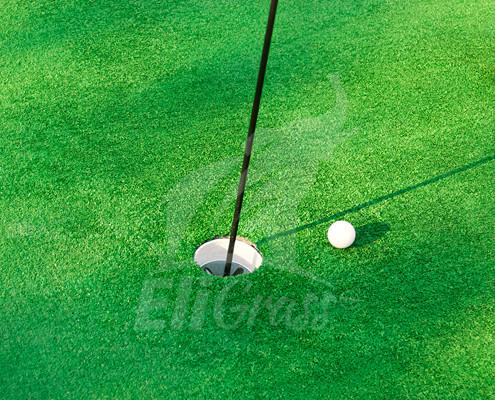 EliGrass Sports Golf 03
