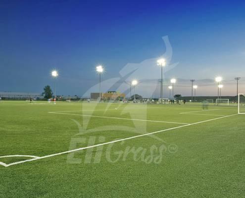 eligrass football 01