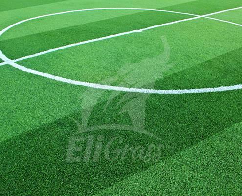 eligrass football 03