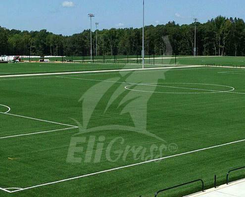 eligrass football 02